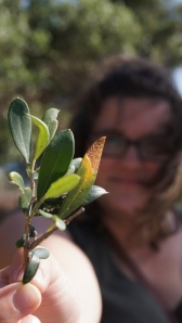 Favourite Photo of myself (and an olive branch)