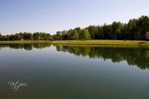 Rotary Park pond