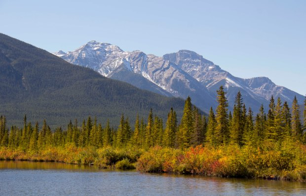 Vermillion Lakes and wetlands had the best fall colours!